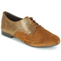Sapatos Mulher Sapatos André COMPLICE Castanho
