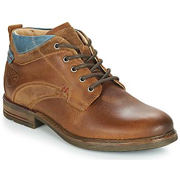 Sapatos Homem Botas baixas André RANGER Castanho