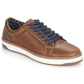 Sapatos Homem Sapatilhas André NIELD Castanho