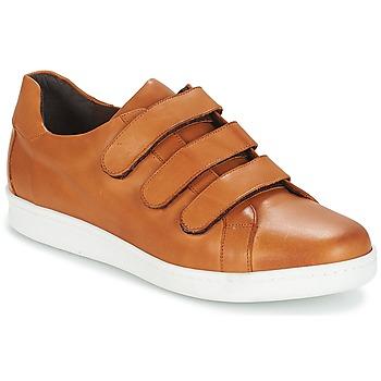 Sapatos Homem Sapatilhas André AVENUE Castanho