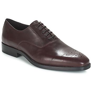 Sapatos Homem Richelieu André DIAMOND Bordô
