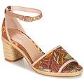 Sapatos Mulher Sandálias André