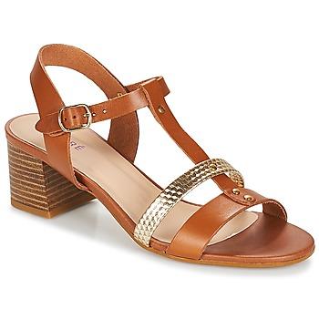 Sapatos Mulher Sandálias André ANTIGUA Camel