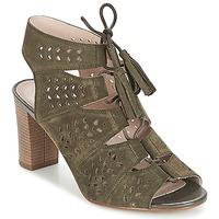 Sapatos Mulher Sandálias André THEI Cáqui