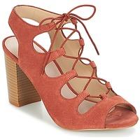 Sapatos Mulher Sandálias André LAETITIA Rosa