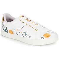 Sapatos Mulher Sapatilhas André COROLLE Branco