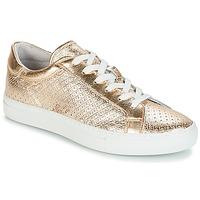 Sapatos Mulher Sapatilhas André FELICIA Dourado
