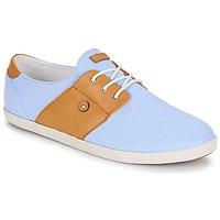Sapatos Sapatilhas Faguo CYPRESS13 Azul / Camel