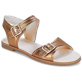 Sapatos Mulher Sandálias Clarks Bay Primrose Bronze / Metálico