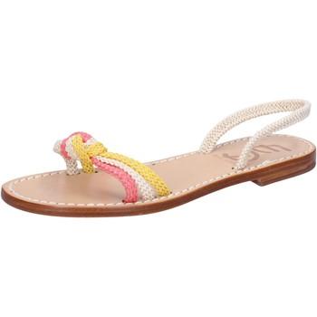 Sapatos Mulher Sandálias Eddy Daniele sandali bianco corda rosa giallo av411 Multicolore