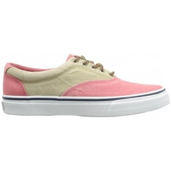 Sapatos Homem Sapatilhas Sperry Top-Sider Striper CVO Two-Tone Chambray  Top-Sider Multicolor