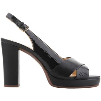 Sapatos Mulher Sandálias Geox D Mauvelle C - Naplak+ Geobuck D724LC 06758 C9999 black