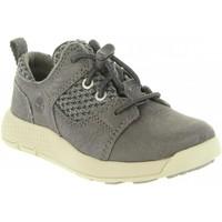 Sapatos Criança Sapatilhas Timberland A1SG4 FLYROAM Gris