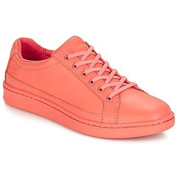 Sapatos Mulher Sapatilhas Timberland San Francisco Flavor Oxford Laranja