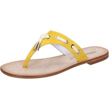 Sapatos Mulher Sandálias Eddy Daniele sandali giallo camoscio aw322 Giallo