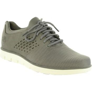 Sapatos Homem Sapatilhas Timberland A1PE4 BRADSTREET Gris