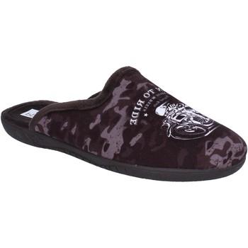 Sapatos Homem Chinelos Pregunta BX441 Castanho