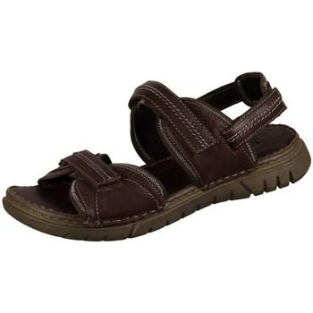 Sapatos Homem Sandálias Josef Seibel Jim Castanho