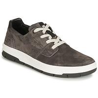 Sapatos Homem Sapatilhas Caterpillar RIALTO Cinza