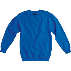 Textil Homem Sweats Sg Raglan Real