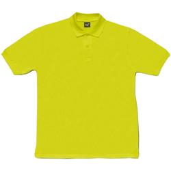 Textil Homem T-Shirt mangas curtas Sg SG50 Tília