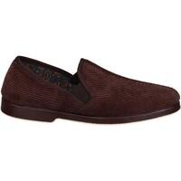 Sapatos Homem Chinelos Gbs EXETER Brown