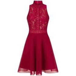 Textil Mulher Vestidos curtos Little Mistress  Berry