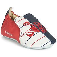 Sapatos Rapaz Chinelos Catimini CALURA Marinho / Vermelho