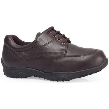 Sapatos Sapatos Calzamedi SAPATOS  M MARRON