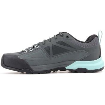 Sapatos Mulher Sapatilhas Salomon X Alp Spry Gtx Cinzento