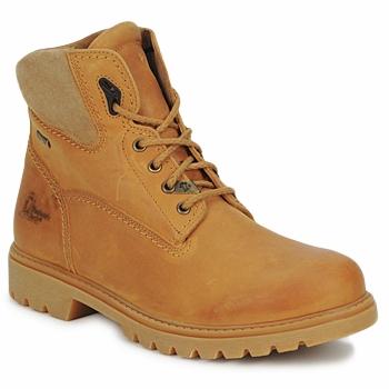 Sapatos Homem Botas baixas Panama Jack AMUR GTX Castanho