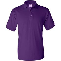 Textil Homem Polos mangas curta Gildan 8800 Púrpura