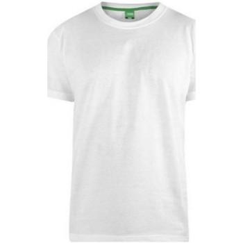 Textil Homem T-Shirt mangas curtas Duke  Branco