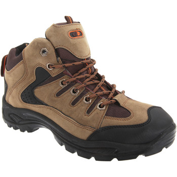 Sapatos Homem Sapatos de caminhada Dek Ontario Khaki