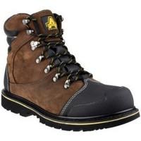 Sapatos Homem Botas baixas Amblers 227 S3 WP Brown