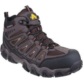 Sapatos Homem Sapatos de caminhada Amblers Rockingham Brown