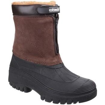 Sapatos Mulher Botas de neve Cotswold Venture Brown