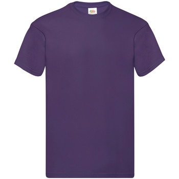 Textil Homem T-Shirt mangas curtas Fruit Of The Loom SS12 Púrpura