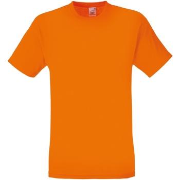 Textil Homem T-Shirt mangas curtas Fruit Of The Loom SS12 Orange