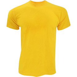 Textil Homem T-Shirt mangas curtas Fruit Of The Loom SS12 Girassol