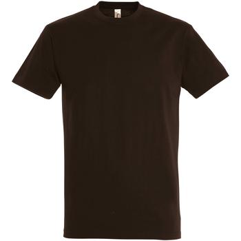Textil Homem T-Shirt mangas curtas Sols 11500 Chocolate