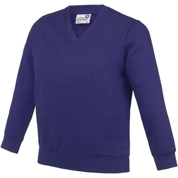 Textil Criança Sweats Awdis AC03J Púrpura
