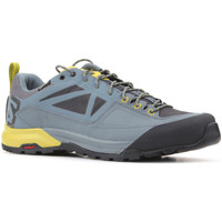 Sapatos Homem Sapatilhas Salomon Trekking shoes  X Alp SPRY GTX 401621 grey, yellow